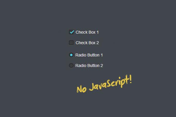 Как сделать красивые checkbox и radio на css3 без javascript